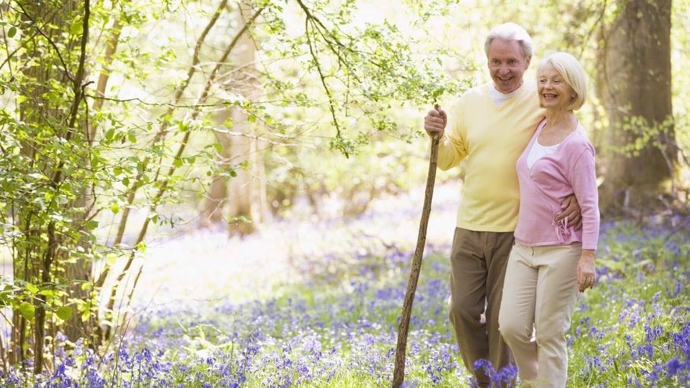 Parkinsons disease care plan